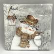 AMB.32511940 Snowman Holding Robin karácsonyi papírszalvéta 25x25cm, 20db-os
